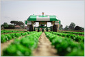 Naïo Technologies, a France-based maker of autonomous farming robots, raises $15.5M Series A, as it plans to expand to the US later this year (Chris O'Brien/VentureBeat)