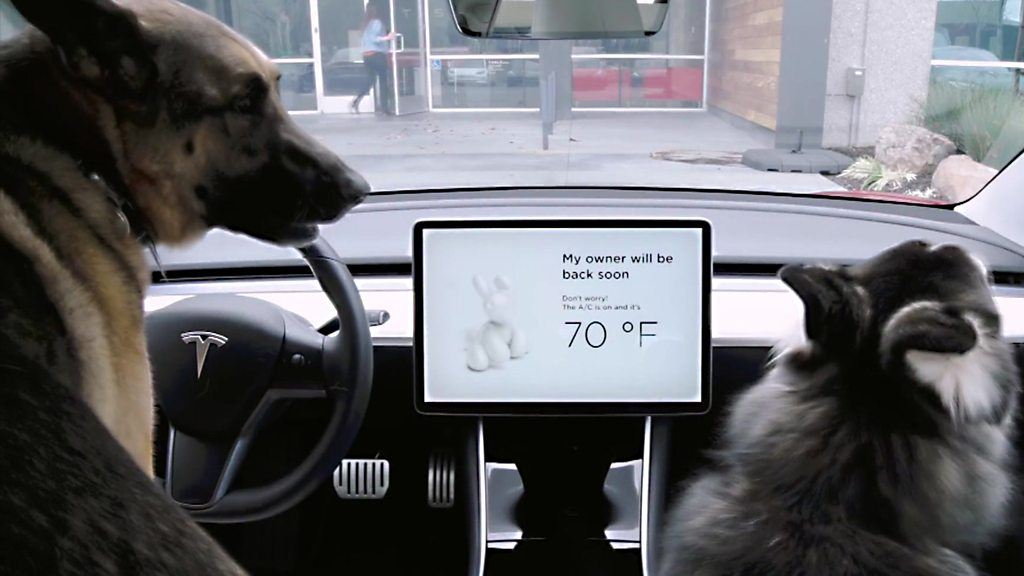 Tesla's 'dog mode' keeps pets cool and other tech news