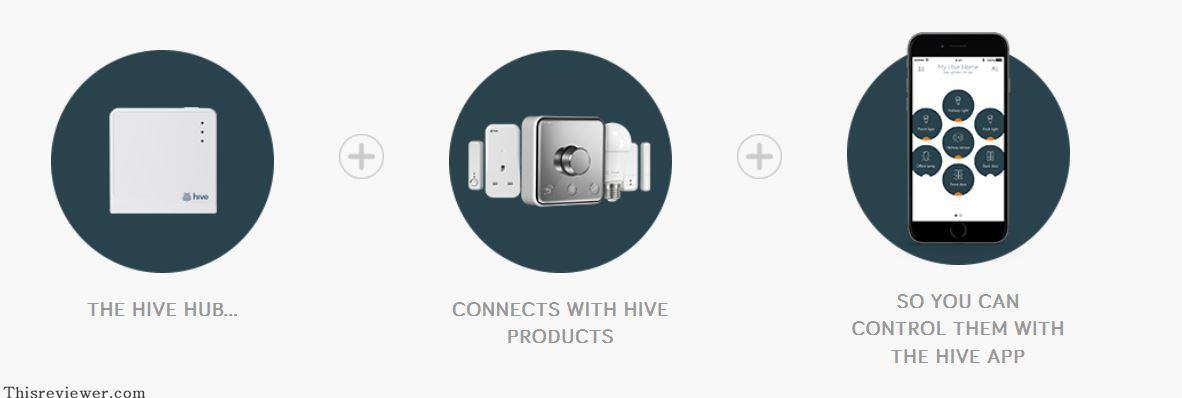 hive_2_review